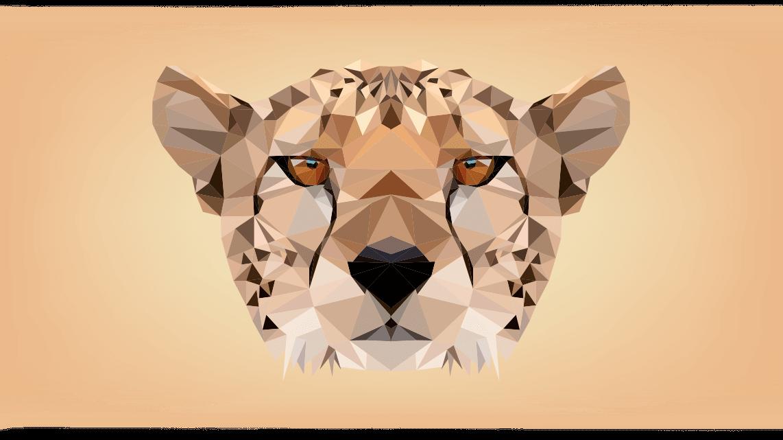 02_Leopard