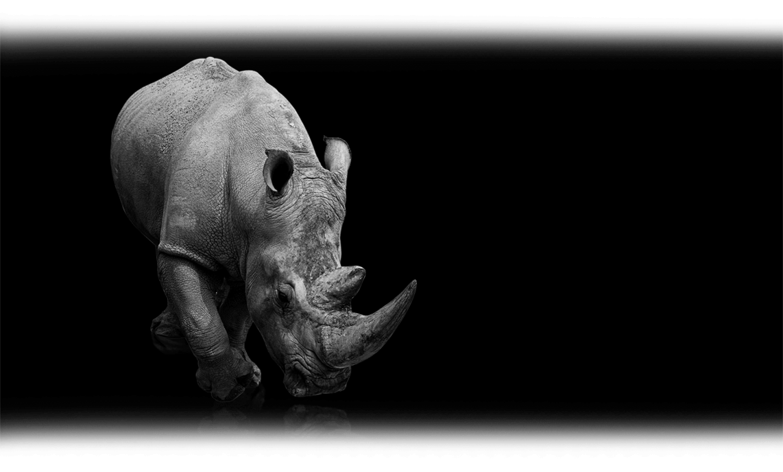 02_Nashorn