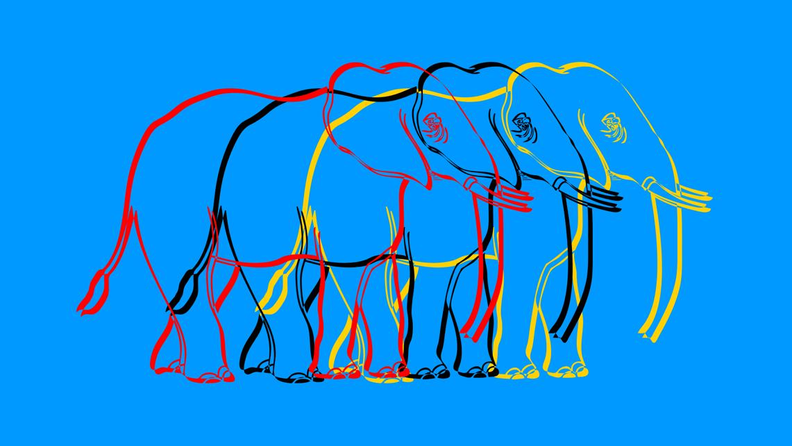 03_elefanten