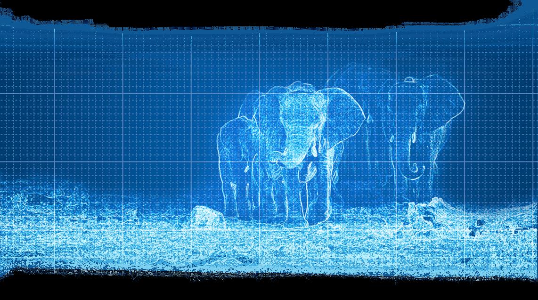 04_Elefanten_Blaupause