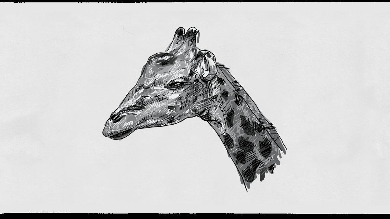 04_Giraffe