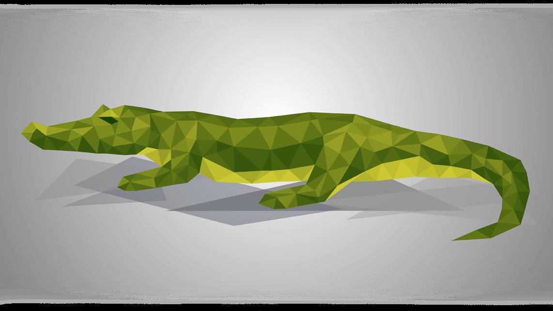 07_Krokodil